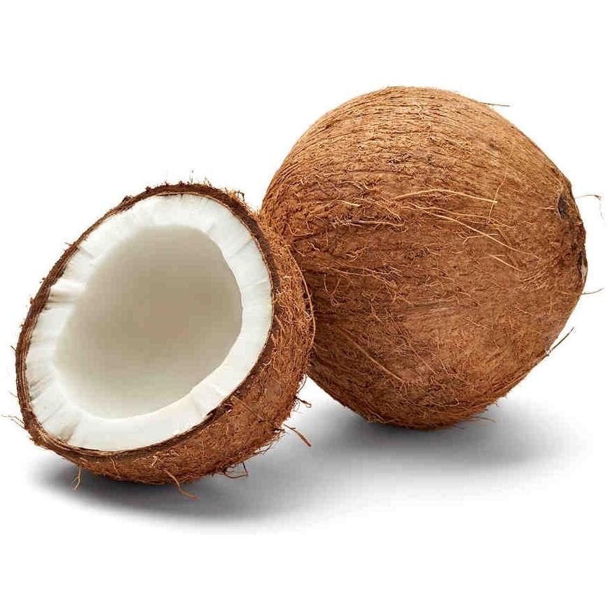 kokos-ciekawostki