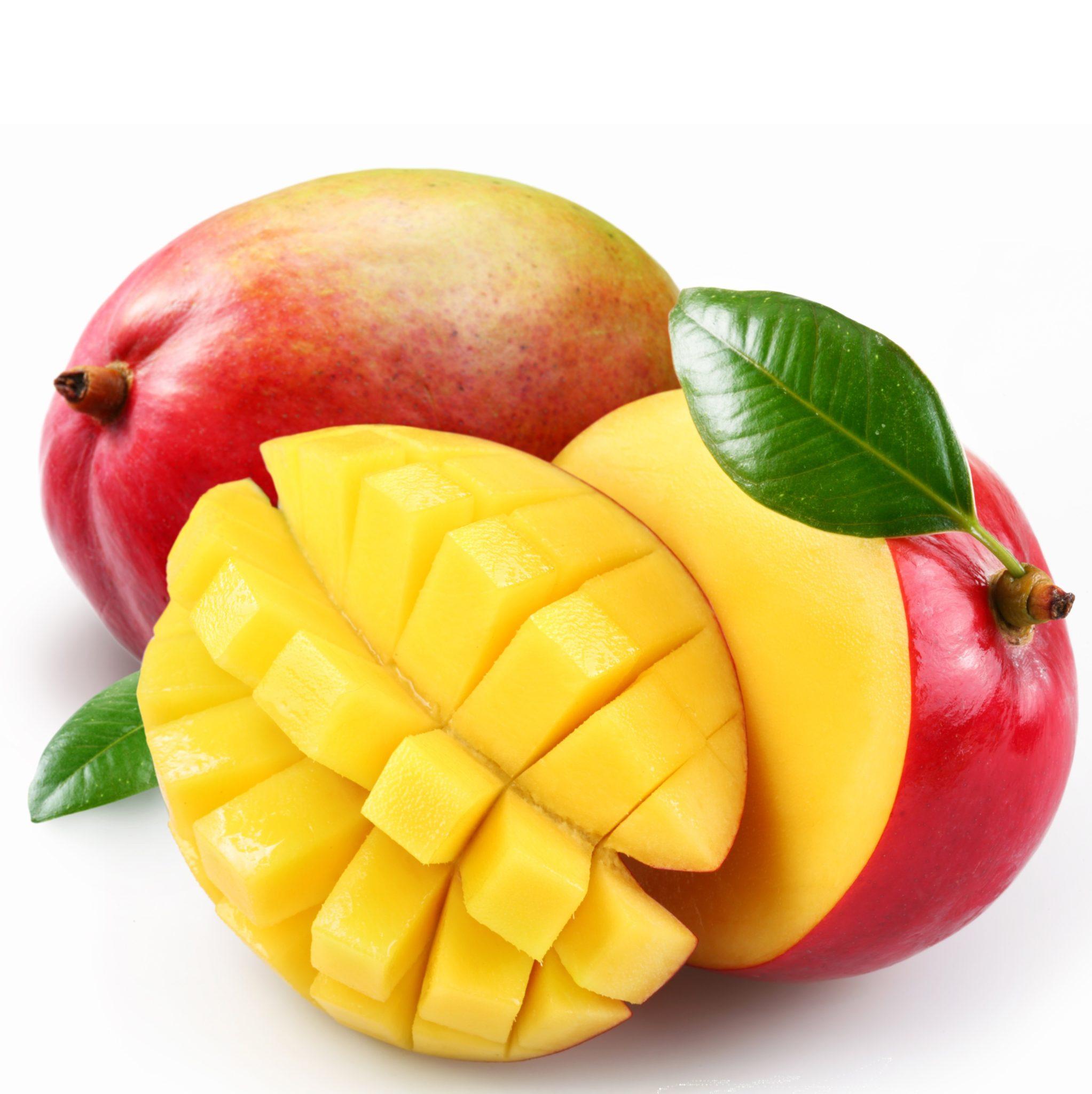 mango-kent1